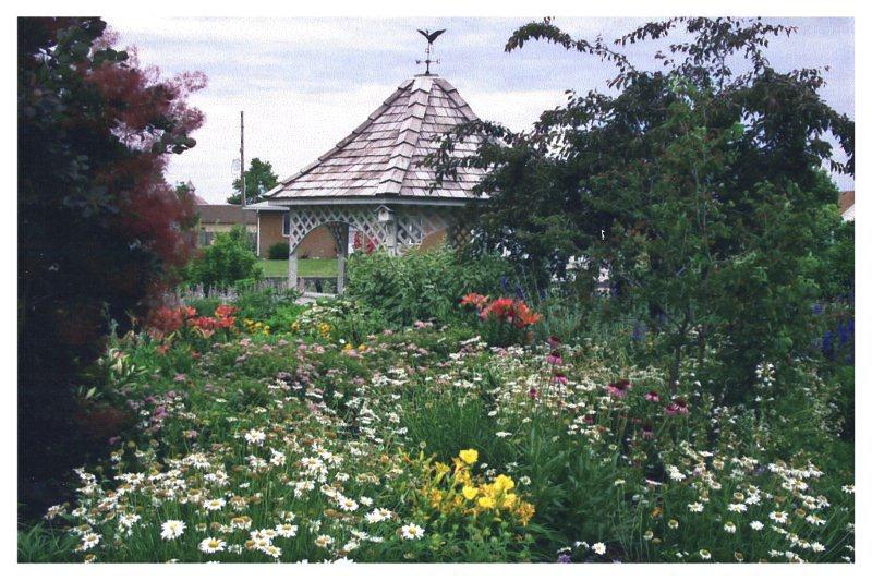 Butterfly_garden_bethesda_photo_display_005.jpg