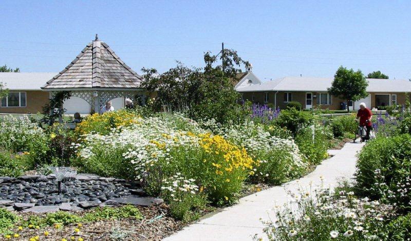 butterfly garden - 2 101-011.jpg